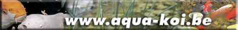 Aqua-Koi