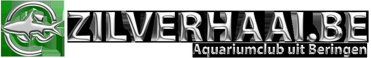 Zilverhaai website
